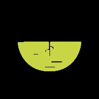 Logo CIDS FRANCE