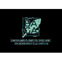 Logo BAGA